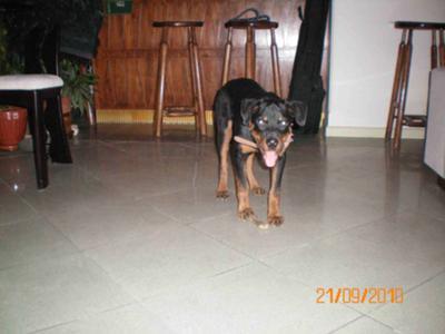 Max - 4 months -1