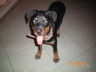 Max - 4 months -2