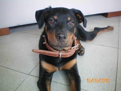 Max - 4 months -3