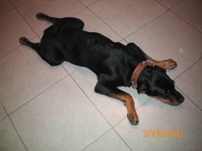 Max - 4 months -4