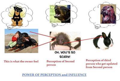 PERCEPTIONS ??  Angel defamed as evil :(